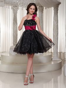A-line Beaded Organza School Autumn Party Dress with Hand Made Flowers in Virginia